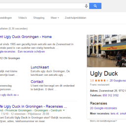 Google Zoeken - Ugly Duck Marketing