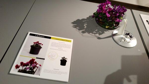 Plant Sex Consultancy - Natlab Eindhoven