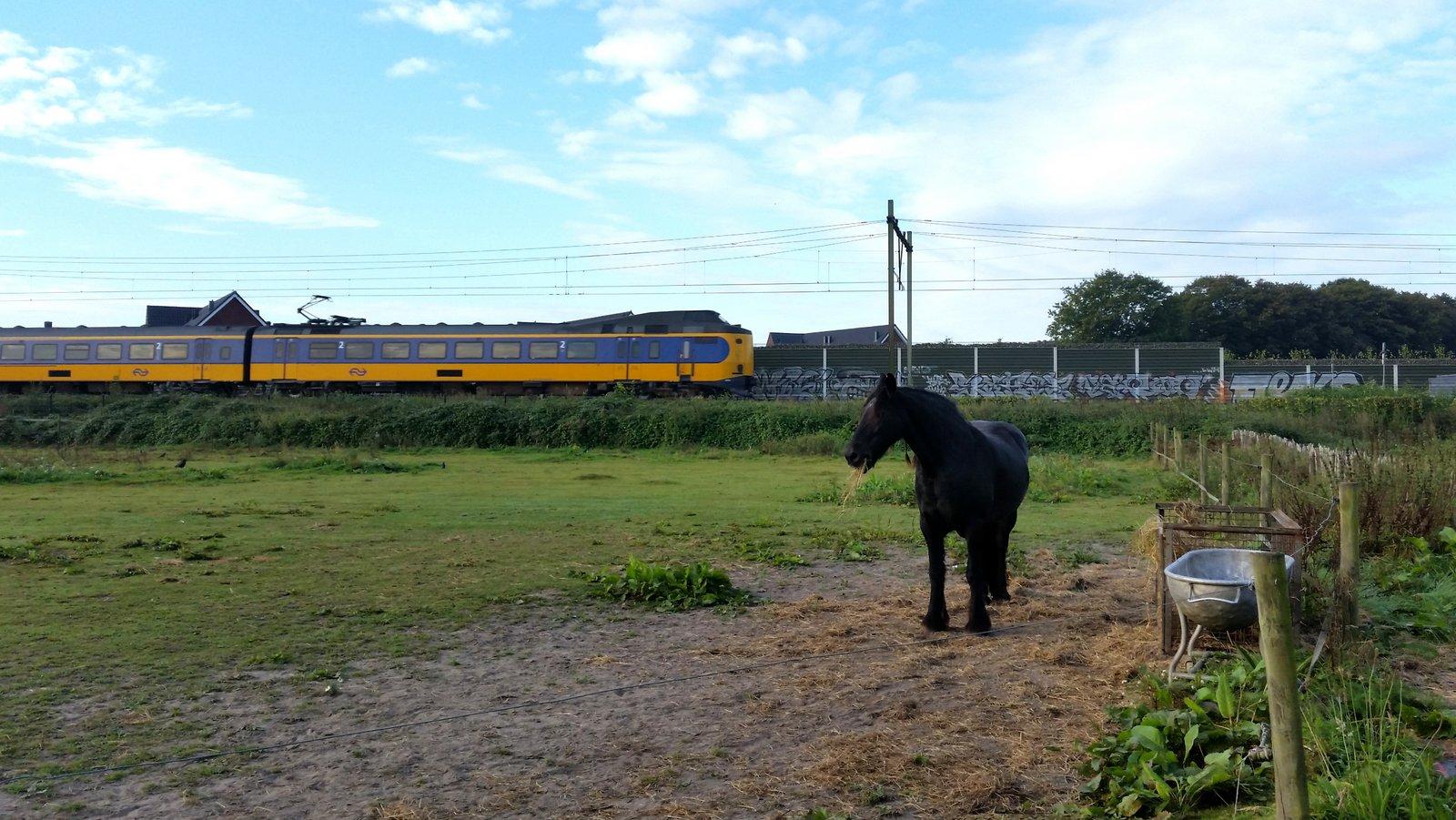 Intercity trein op spoor Eindhoven Weert