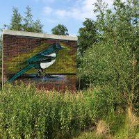 Ekster graffiti op stroomhuisje